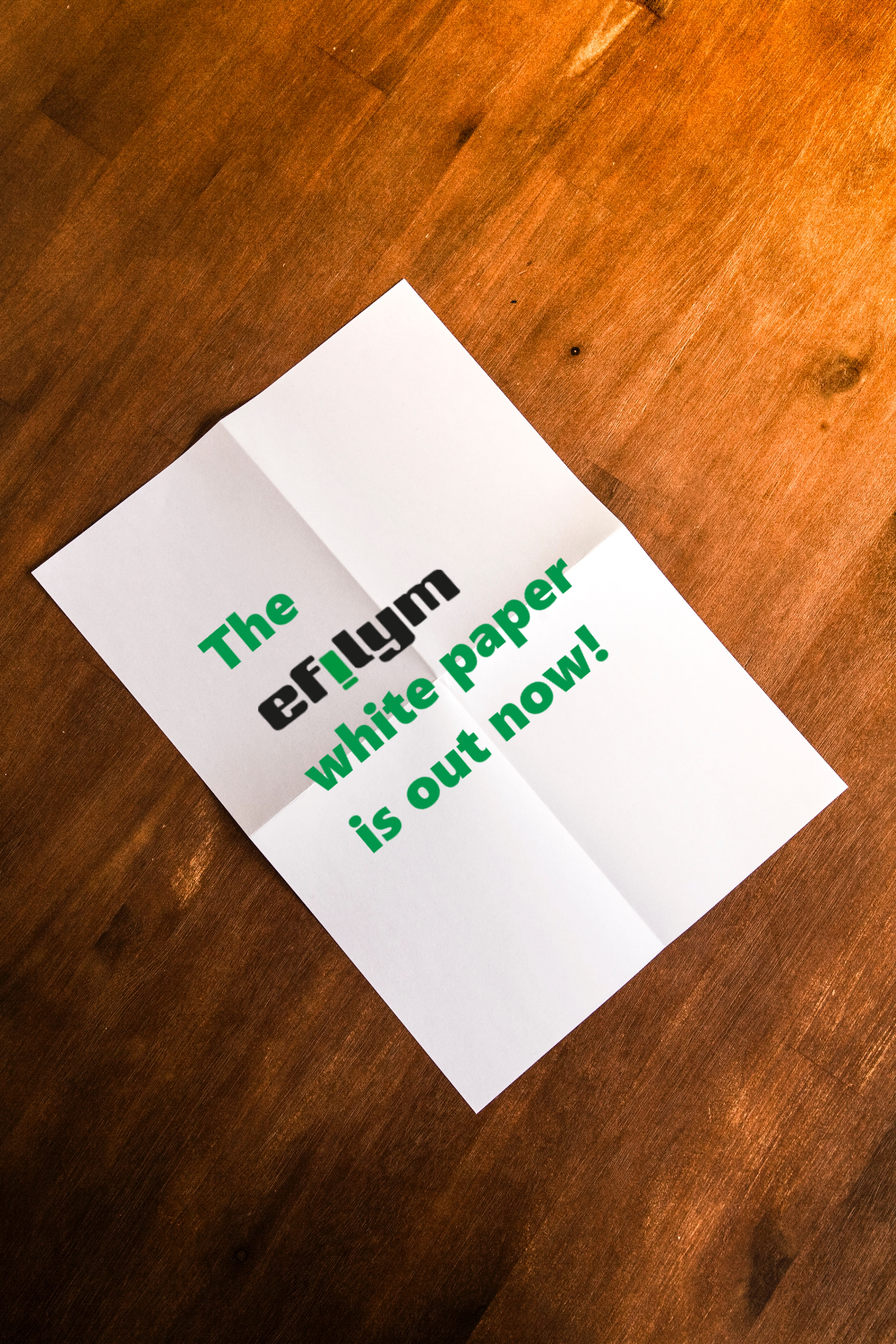 The EFILYM White Paper - Out Now!