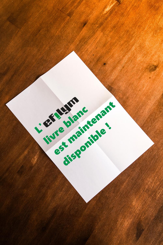 L'EFILYM Livre Blanc – Maintenant disponible !
